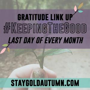 Gratitude Link Up